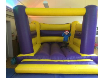 Low Height Bouncer - Click for more info